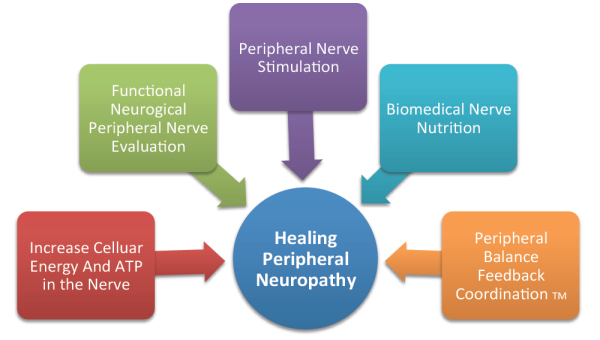 The Role Of Inflammation in Peripheral Neuropathy