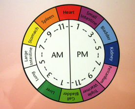 Body Meridian Clock resized 600