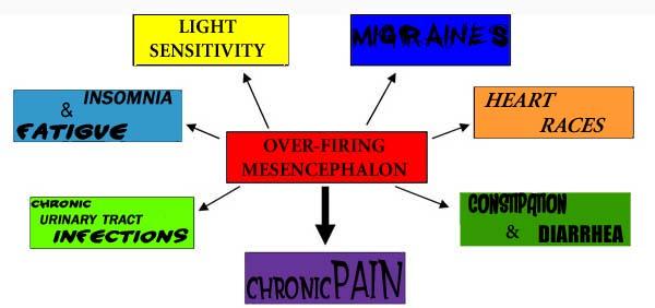 BBT Over-Firing Mesencphalon