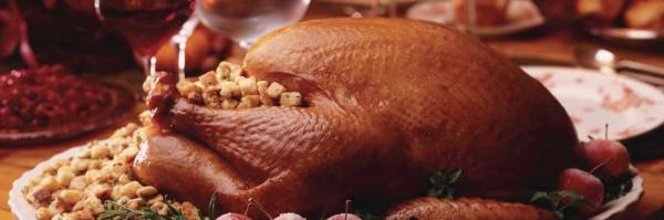 Thanksgiving resized 600