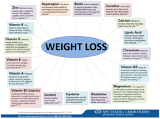 Weight Loss Wheel Image resized 600 resized 600