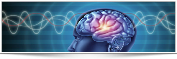 Three Keys To Brain Health And Healing Leaky Gut Syndrome