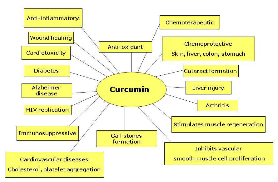curcumin_health_conditions-3317